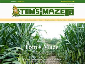 tomsMaze