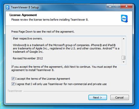 TeamViewer Remote Support | VillaGraphX